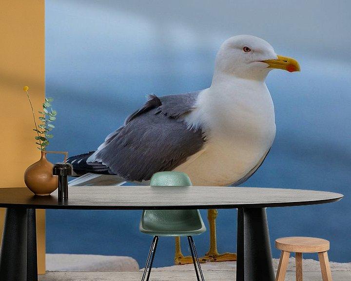 Beispiel fototapete: Möwe vor blauem Meer von Fartifos