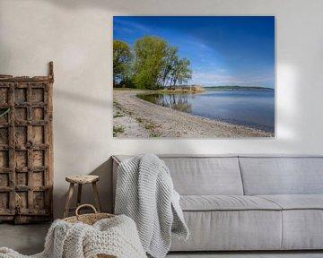 De Kummerowsee in het Mecklenburgse merengebied van Animaflora PicsStock