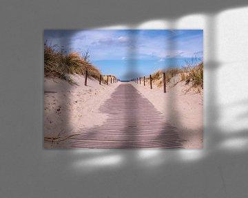 Strandpad aan de Oostzee in Warnemünde van Animaflora PicsStock