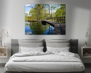 steiger aan de rivier de Spree in Lübben van Animaflora PicsStock