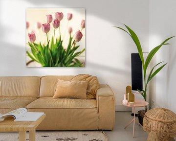 Lila-rosa holländische Tulpen in einer Vase, von Ans van Heck