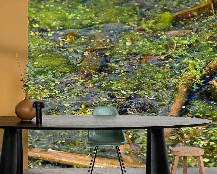 Sfeerimpressie behang: Groene kikker van joyce kool
