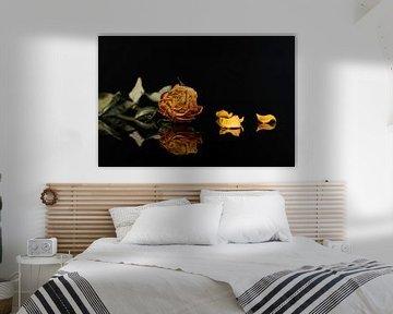 Gestrichelte gelbe Rose von Gaby Hendriksz