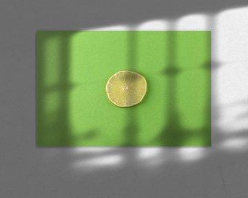 Schijfje limoen tegen een groene achtergond van Ans van Heck