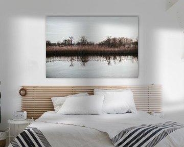 Skyline Amsterdamse Waterleidingduinen van Sanne Dost