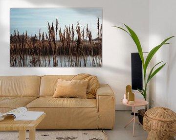 Skyline aus Schilf in den Amsterdamer Wasserversorgungsdünen von Sanne Dost