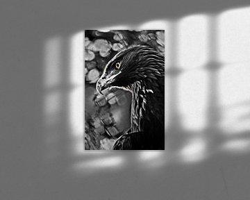 Verfärbte Adler mit einem aufmerksamen gelben Auge, kontrastierenden Steinadler gefährlich schön siv von Michael Semenov