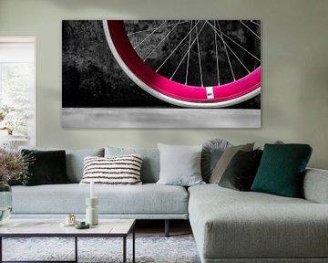 Details van fiets van Vincent van Kooten