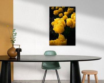 Gelbe Tulpen von Marvin Van Haasen