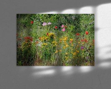 Buntes Wildblumenfeld von JM de Jong-Jansen