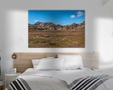 Landmannalaugar van Thomas Heitz