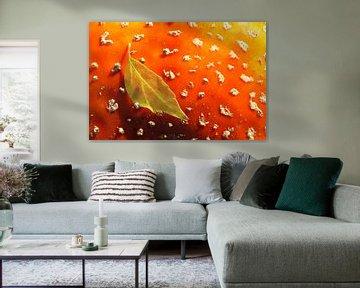 Herfstblad op vliegenzwam von Antwan Janssen