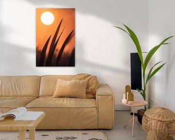 Sonnenaufgang mit Tautropfen auf Schilf von Coen Weesjes