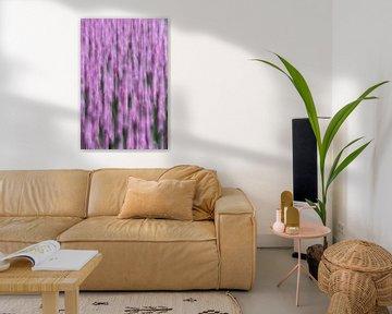 Lila Tulpen Bewegung von Patrick Verhoef