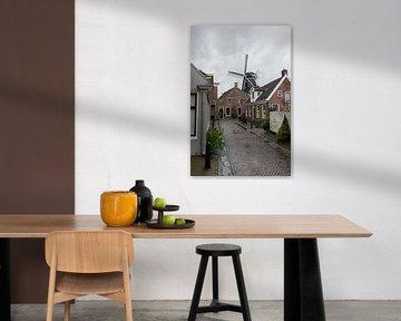 Zicht op de molen van Winsum
