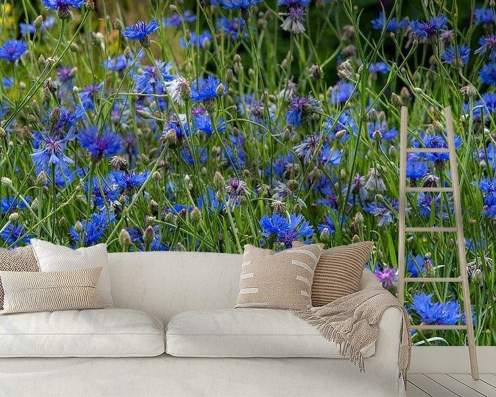 Sfeerimpressie behang: Veld vol met bloeiende blauwe korenbloemen van JM de Jong-Jansen