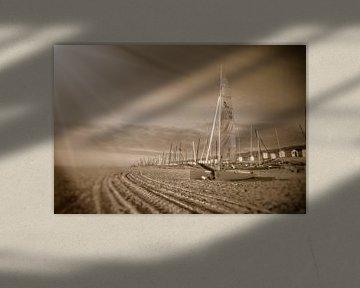 tire tracks van Cor Woudstra