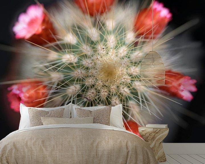 Impression: Mini cactus à fleurs rouges sur Henk Vrieselaar