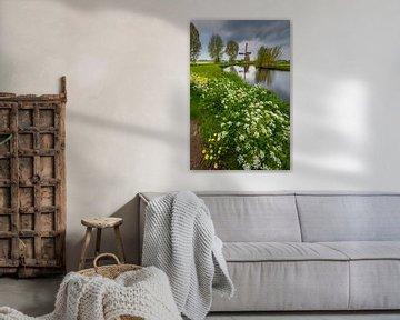 Windmühle im Frühling von Thijs Friederich