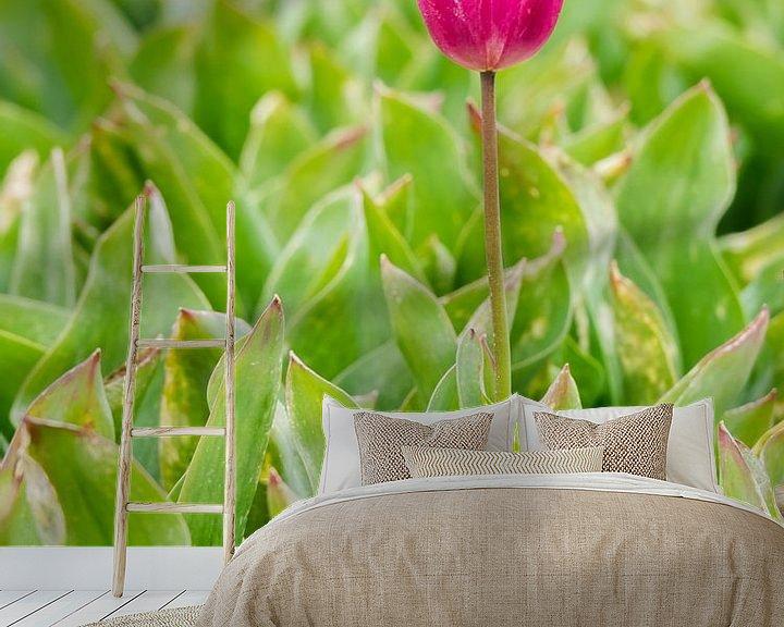 Sfeerimpressie behang: Paarse tulp van Martijn Tilroe