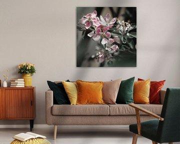 Blüte Blüte von Daphne Groeneveld