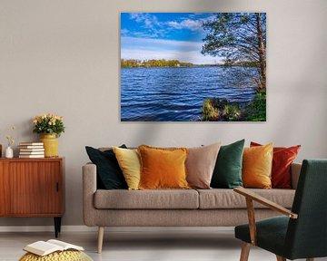 Nationalpark an der Mecklenburgische Seenplatte von Animaflora PicsStock