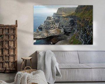 Klippen der Insel Rathlin in Nordirland von Babetts Bildergalerie