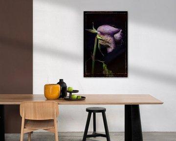 Oude Bloemen 19 van Henk Leijen