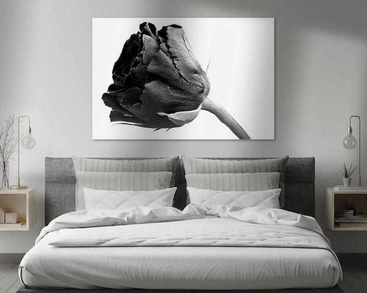 Sfeerimpressie: Zwarte roos op witte achtergrond van JM de Jong-Jansen