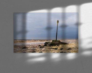 Op laag water stenen zoeken van Ingrid van Wageningen