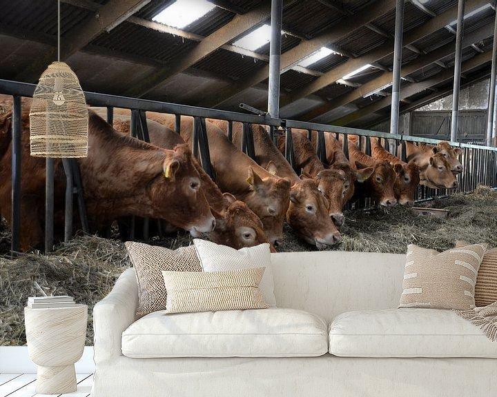 Sfeerimpressie behang: Koeien in de stal van FotoGraaG Hanneke