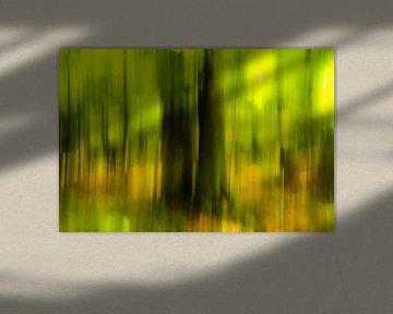 Abstrakt Bäume im Frühling im Wald Verwischung mit Unschärfe von Dieter Walther