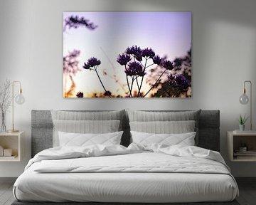 Blumen von Art_Pics_Lotte | Lotte Photo&Design