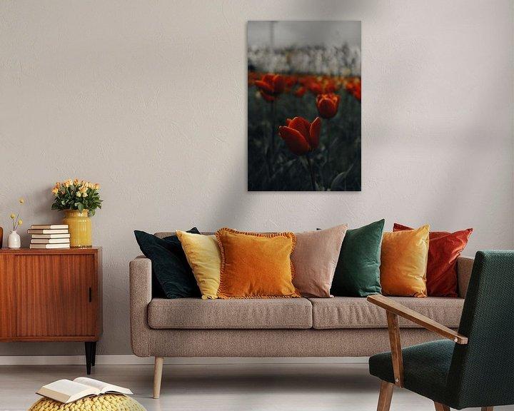 Impression: Tulipes sur Werner Lantinga