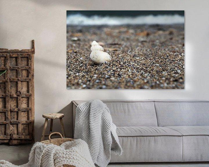 Impression: Coquillage sur la plage sur Frank Herrmann