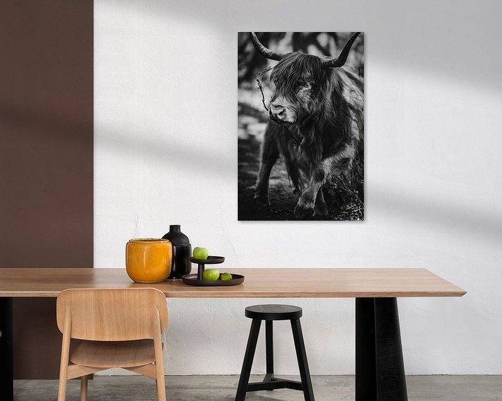 Sfeerimpressie: Portret van een Schotse hooglander. van Milou Schothuis