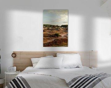 duinen bij Groet (Noord Holland) van Ron Smit
