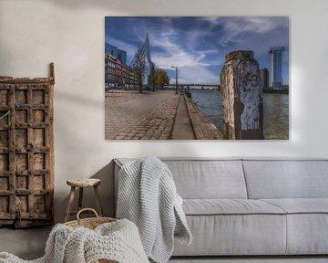 Erasmusbrug Noordereiland van Angelique Niehorster