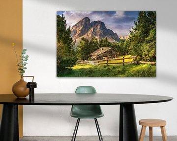 Alpenhut in de Alpen in de Dolomieten in Tirol. van Fine Art Fotografie
