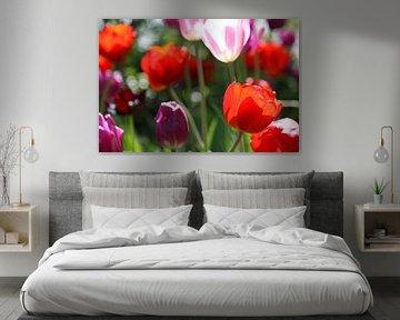 Tulpen in de Keukenhof (4) von Antwan Janssen
