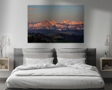 Eiger Mönch und Jungfrau mit Alpenglühen beim Sonnenuntergang von Martin Steiner