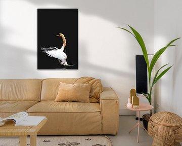 Swan Dance one color van Lynlabiephotography