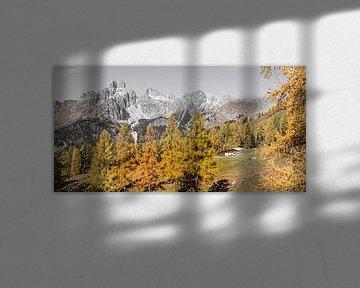 """Paysage de montagne """"Cabane d'alpage dans les Alpes"""". sur Coen Weesjes"""
