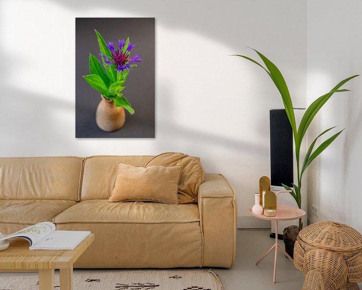 Beispiel: Flockenblume (Centaurea) von Fartifos