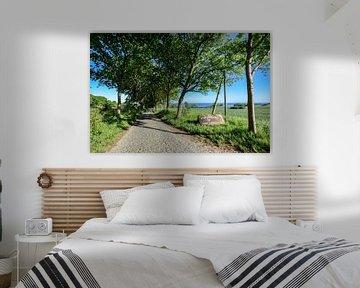 Groß Stresow Nähe Putbus, Rügen von GH Foto & Artdesign