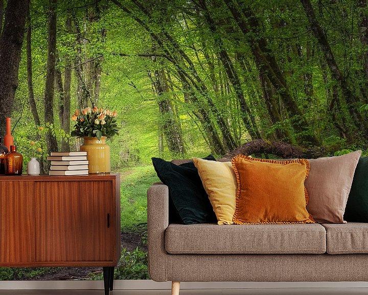 Sfeerimpressie behang: Regendag in de bossen van Hogne bij Marche-en-Famenne van Peschen Photography