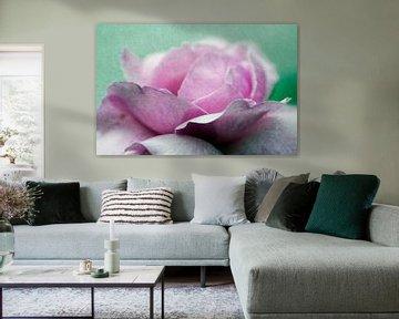 Rosenblüte von Roswitha Lorz