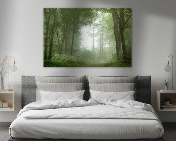 Dream world van Roelie Steinmann