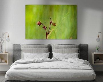 Bloemendroom 1 van t.ART