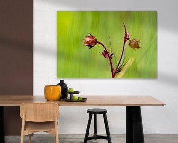 Bloemendroom 2 van t.ART